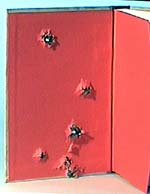 BRANCHES: inside cover showing 9mm bullet exit holes